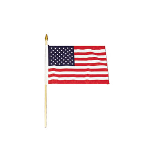 4 in. x 6 in. Cloth American Flag
