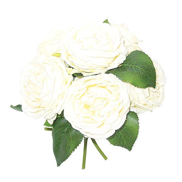 creamwhite english garden rose bouquet x6 - Cream Garden Rose