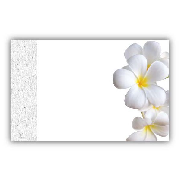No Sentiment White Flowers Elegant