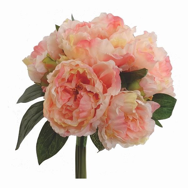 12 in. Pink/Cream Fresh-Cut Peony Bouquet X5 Flower/2 Buds, Silk Flower