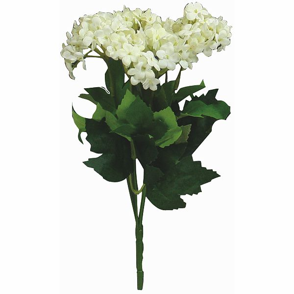 12 in. Cream Snowball Hydrangea  Bush X6