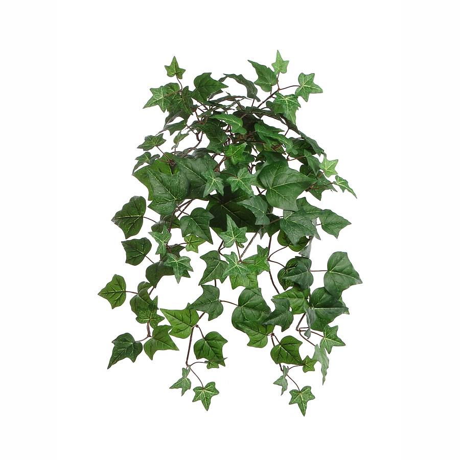 23 in. Green English Ivy Bush w/117 Leaves