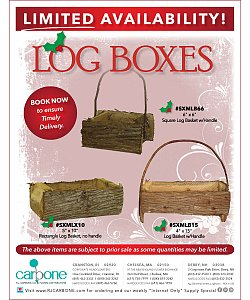 hg_Christmas-Winter_LogBoxes