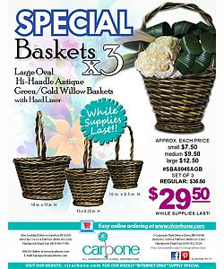 Flower Basket Special