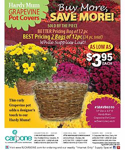 Grapevine Pot Covers