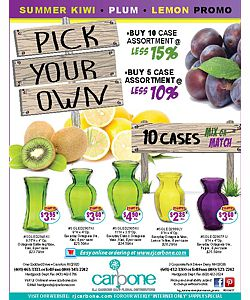 Kiwi Plum Lemon Vases