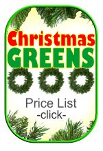 Christmas Greens Decorations
